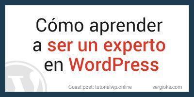 como-convertirse-en-experto-wordpress