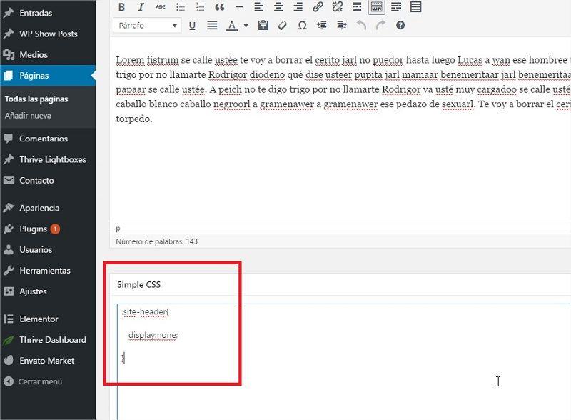 Añadir Custom CSS en WordPress